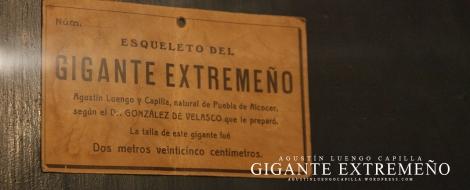Detalle de placa del Museo Antropológico ( 10 cm menos que la talla )