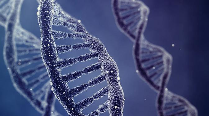 Estudio genético del Gigante Extremeño